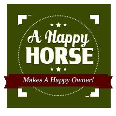 happy-horses