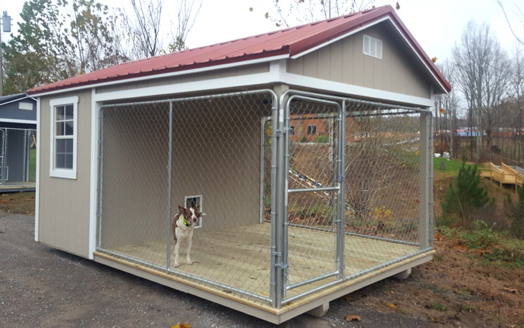 Introducing our new dog kennels for Red barn dog kennel